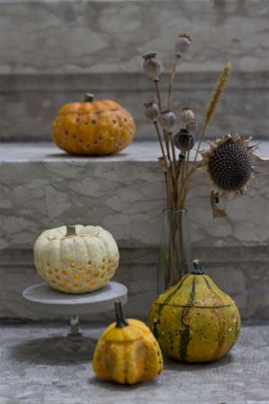 Kürbislaterne: ein DIY für gemütliche Herbsttage!