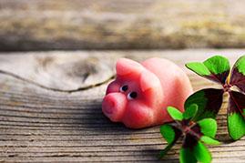 Schwein als Glücksbringer