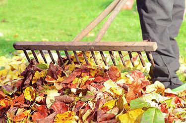 Gartenarbeiten im Oktober