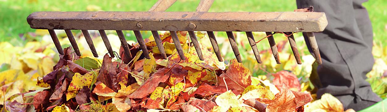 Gartenarbeit im Oktober - Header
