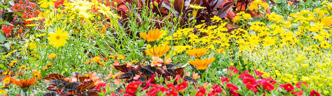Gartenarbeiten im April - Header