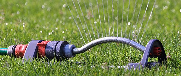 Gartenarbeiten im Juli - Rasensprenger