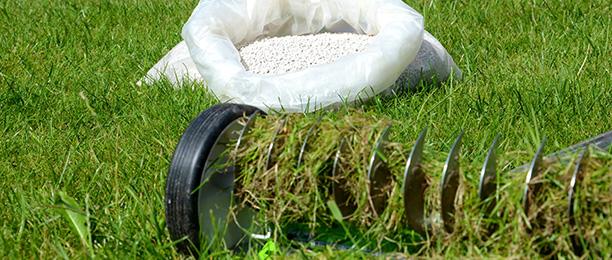 Gartenarbeiten im März - Rasen vertikutieren