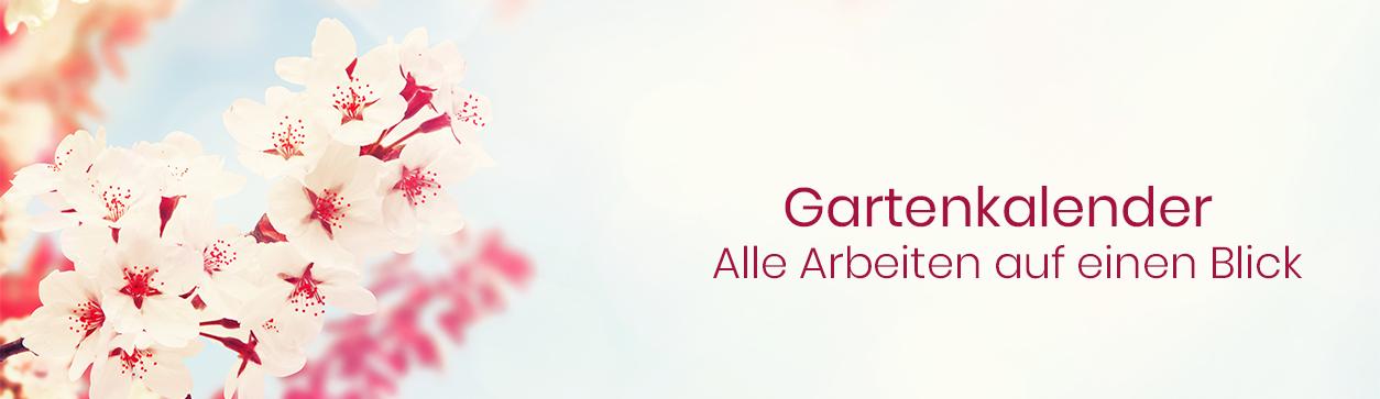 Gartenkalender - Alle Gartenarbeiten auf einen Blick