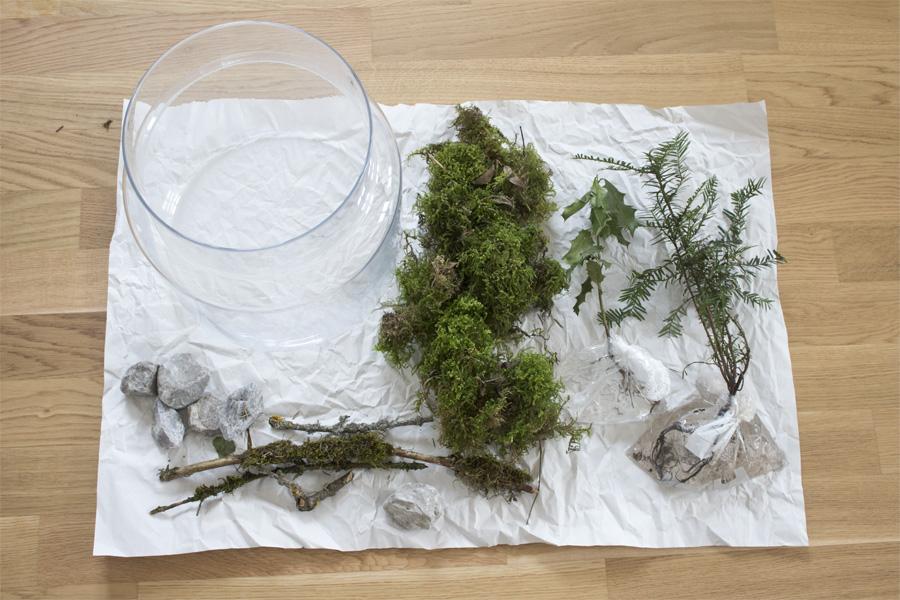 Deko im Glas: Materialien